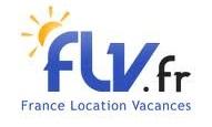 logo flv